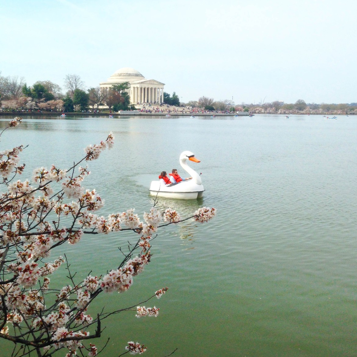 The Best Touristy Sites to See in DC!