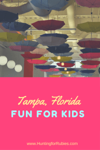 Where to Stay and What to Do for a Fun Trip To Tampa with Kids. www.huntingforrubies.com