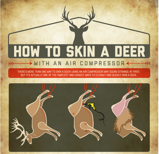 How to Skin a Deer With an Air Compressor