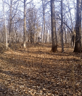 Forest Camouflage, leaves, Blind concealment, Weekend Warriors, corn feeders, shooting lanes, Portable Stand