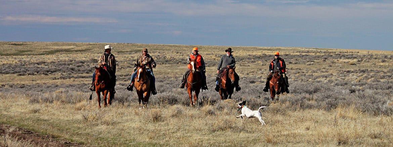 horse hunting border