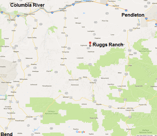 ruggs ranch image