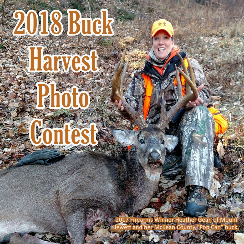 2018 Harvest Photo Contest.jpg