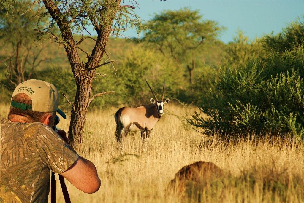 картинка на тему браконьерство в пустыне мире