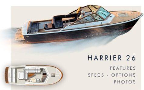 Harrier26