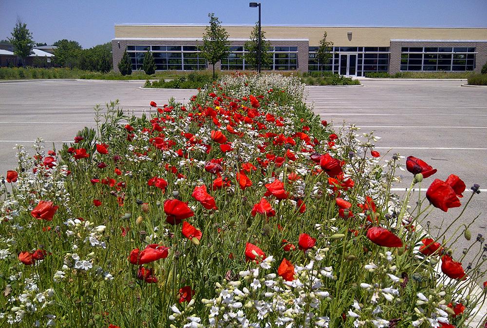 Gateway_West Sustainable I_Landscaping_001