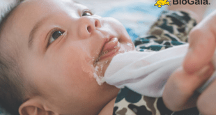 Phân biệt trẻ nôn trớ sinh lý và nôn trớ bệnh lý
