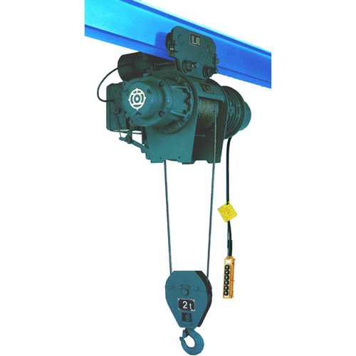 Hoist with Motorized Trolley