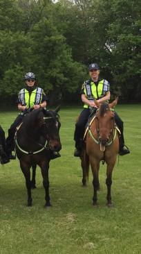 Huron Mounted Unit photos submitted by Cherie Hinderer Stump.