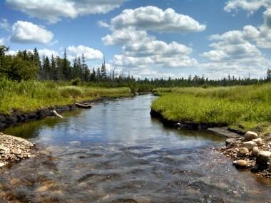 Free-flowing Upper Black River