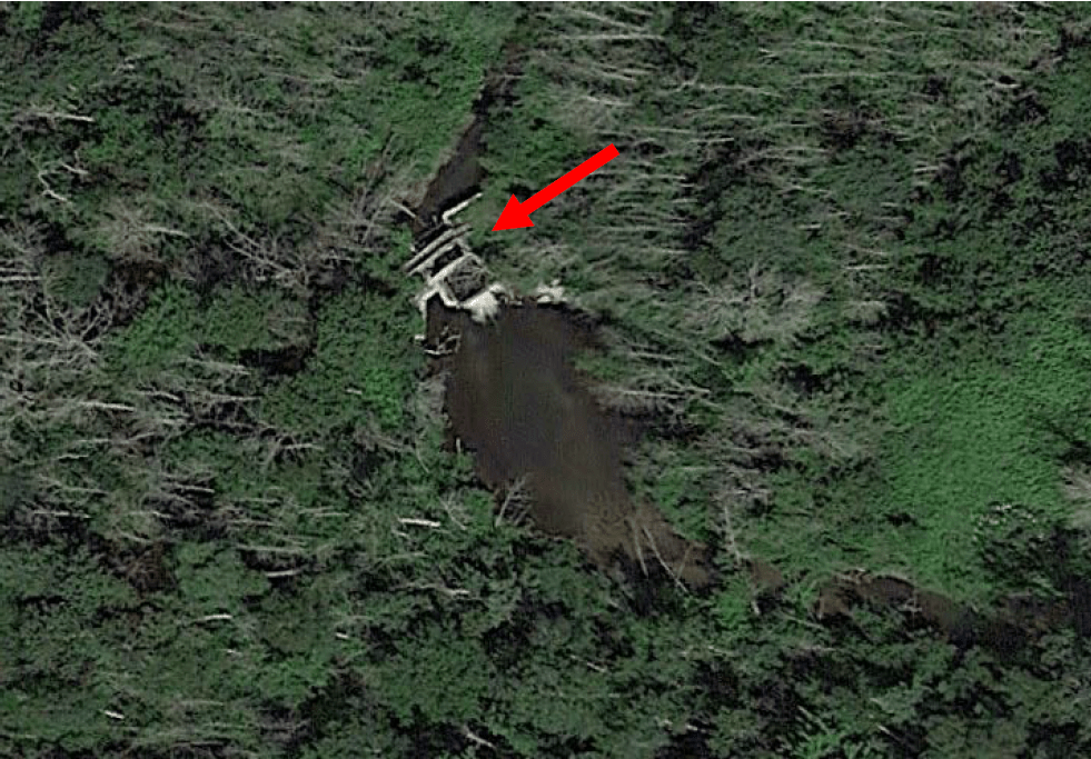 Buhl Dam location on the South Branch Pine River