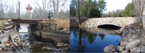 Miller Creek Before and After