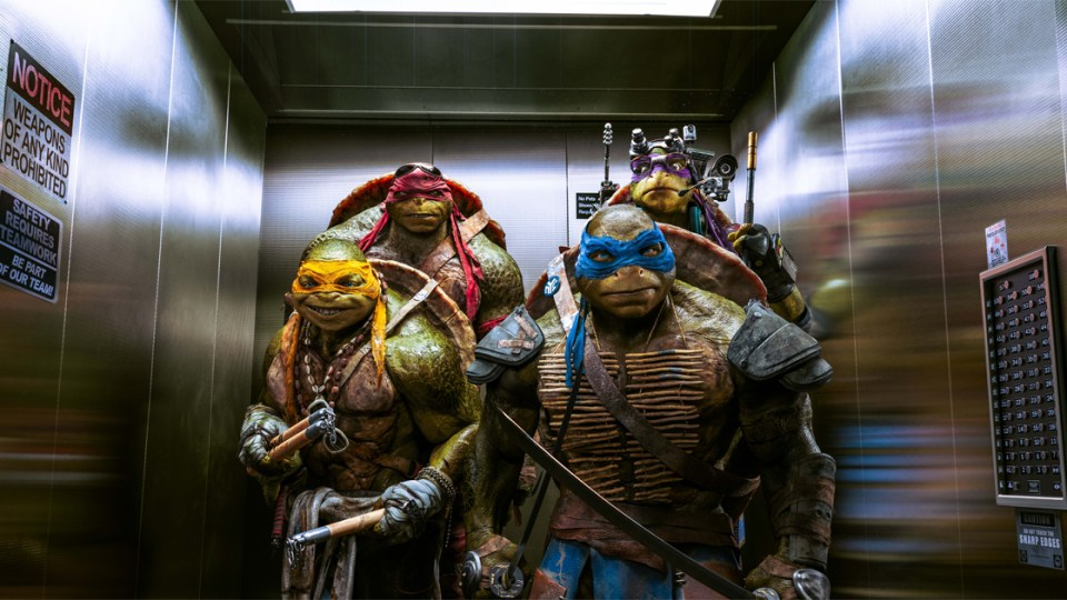 Teenage Mutant Ninja Turtles Michael Bay
