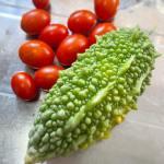 沖縄ゴーヤー収穫!2個しかないから、もっと大きくなって欲しかったけど、黄色くなってきたので🍽肉巻きにしていただきます🤤#とげとげ#いぼいぼ#が#素敵#夏の味#今日は#キレイな夕焼け#だったなぁ#狭小農園#収穫記録#がんばれ日本