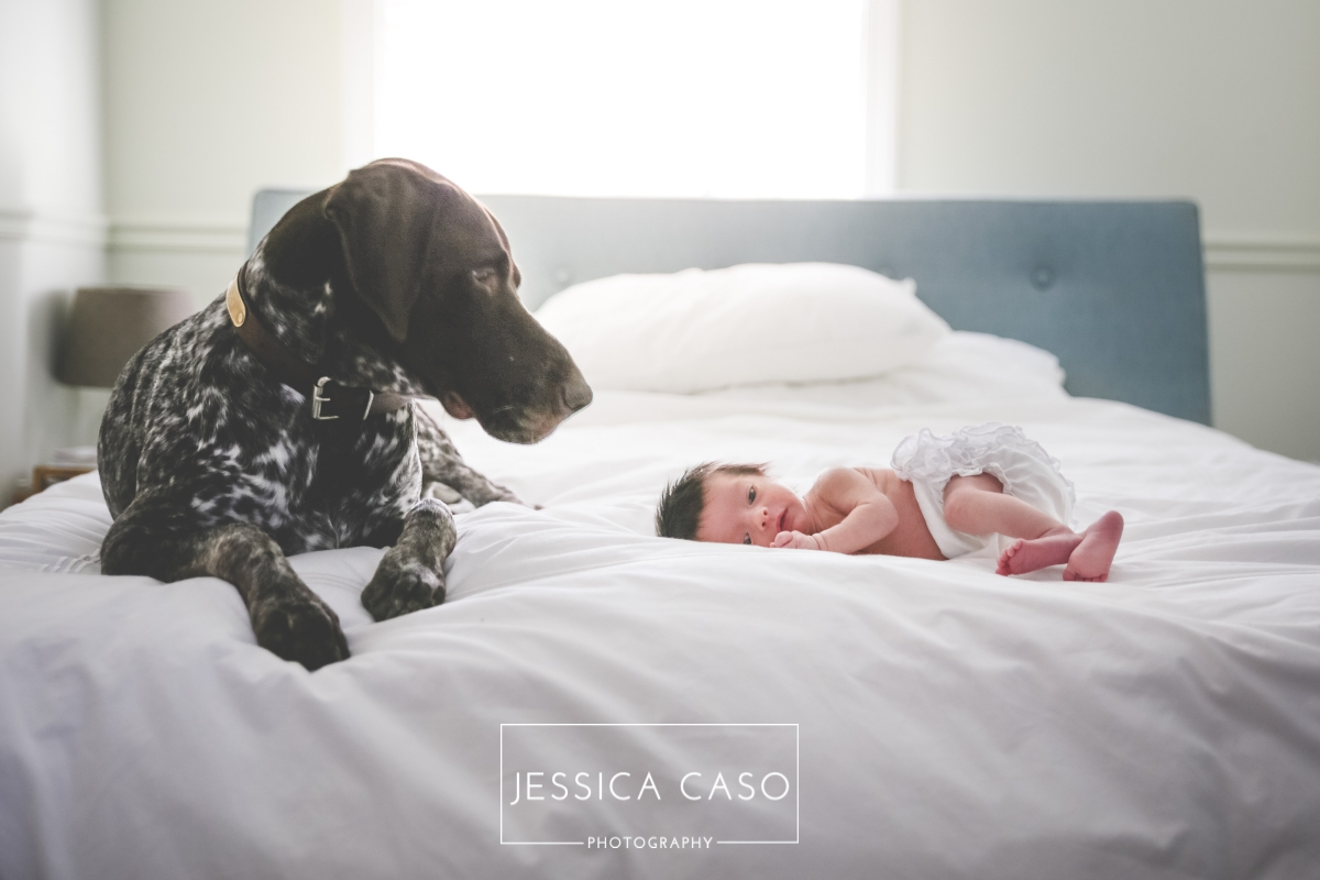 The 5 Best Newborn Photographers In Dc