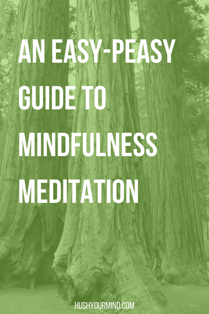 An Easy-Peasy Guide to Mindfulness Meditation | We all know mindfulness meditation improves our lives. Learn how to practice mindfulness meditation and the #1 mistake to avoid with this brief guide.