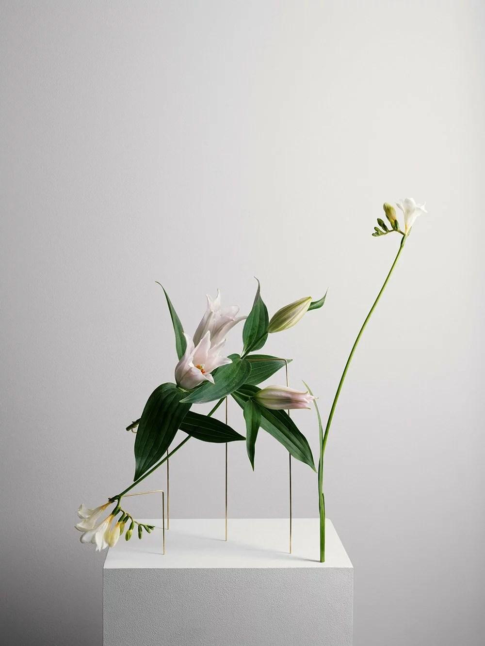 Design végétal, Bloc Studios, Postures Vases