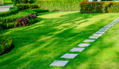 A lush and beautiful lawn with a rustic stone path through it.