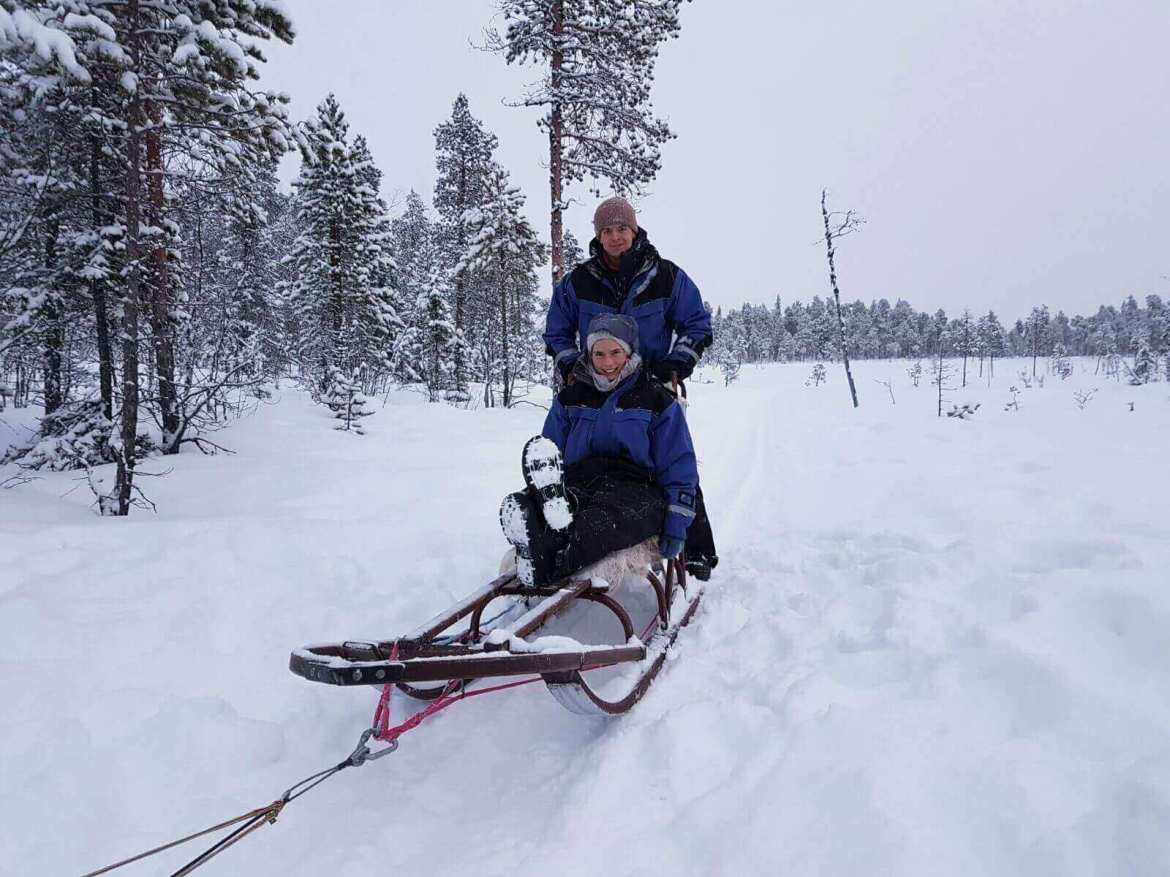 Husky Tours Lapland Sit and Drive