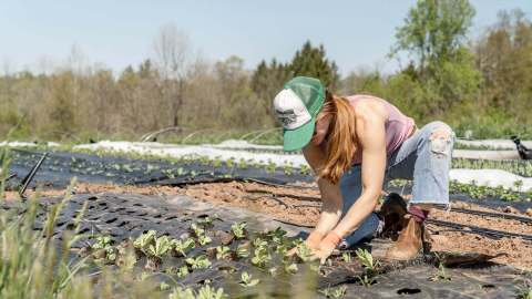 HR & Recruitment Apps for Seasonal Workers in Agriculture