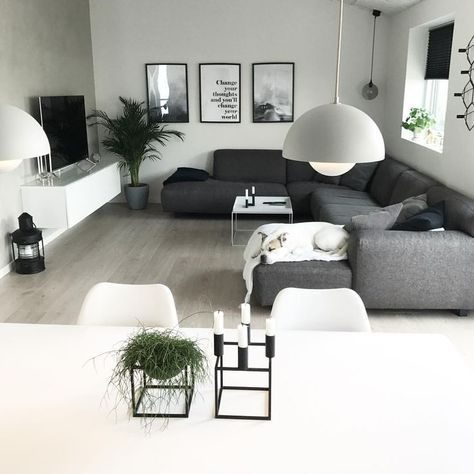 Monochrome Apartment Living Room Ideas