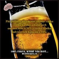 Jedno pivo denně pro zdraví...