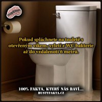 Bakterie z WC