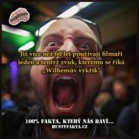 Wilhemův výkřik