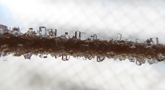 塩の結晶の形