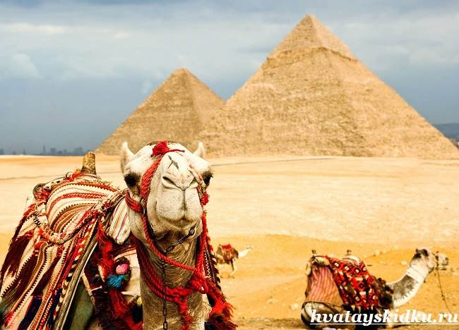 Отдых-в-Египте-1