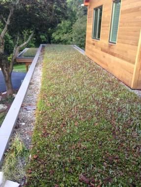 Vernon NJ - Rooftop Garden Green Roof Design - Highview Creations