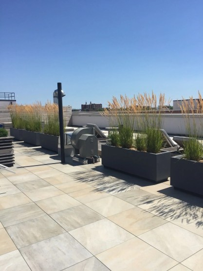 Highview Creations-FH Green Roof-NYC-10