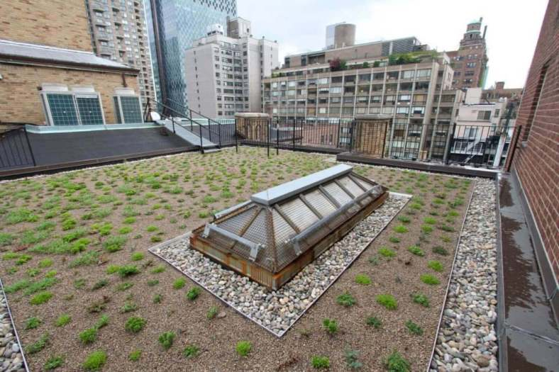 Highview Creations-Lenox Hill Green Roof-NYC-1
