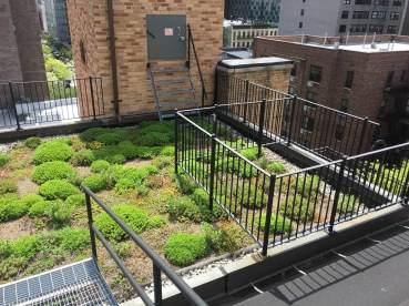 Highview Creations-Lenox Hill Green Roof-NYC-3