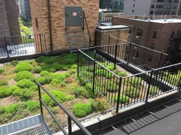 Highview Creations-Lenox Hill Green Roof-NYC-3