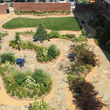 Maujer Courtyard - Brooklyn Extensive Green Roof - Highview Creations