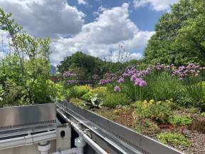 highview creations_demo garden_green roof3