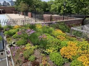 highview creations_demo garden_green roof4