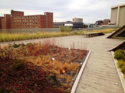 SUNY ESF - Green Roof, Rooftop Garden Services - Highview Creations