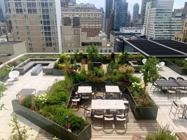 Rooftop garden in Manhattan