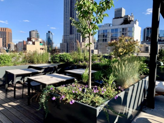 Rooftop garden with furniture and native perennials