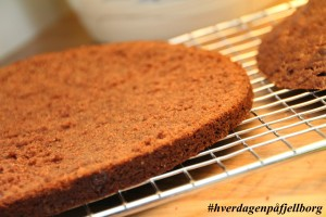 Kakebunn sjokoladekake