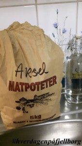 Aksel matpoteter