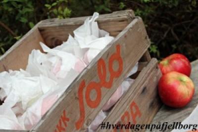 Lagre epler i matpapir