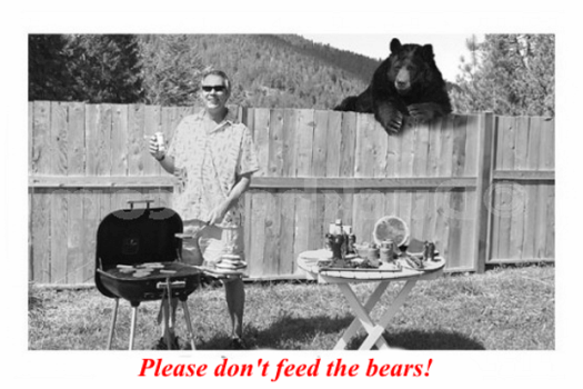 Please Don't Feed The Bears