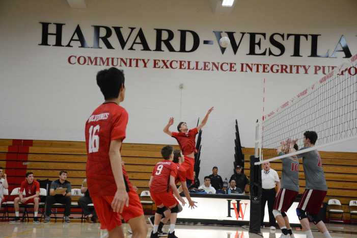 Boys' volleyball drops match to Alemany