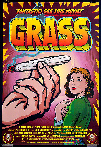 Grass Poster Small