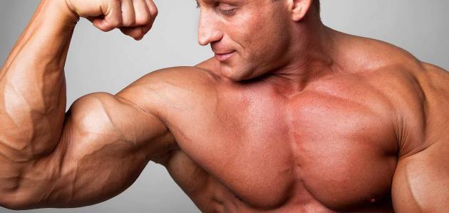 كيفية زيادة هرمون الذكورة عند الرجل حياتك