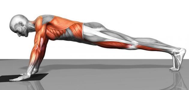 تمارين لشد عضلات البطن في اسبوع حياتك