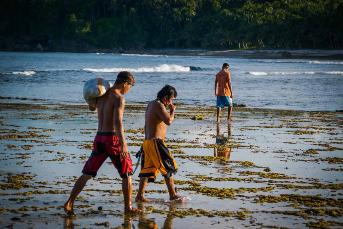 Rybári nahadzujúci siete počas odlivu